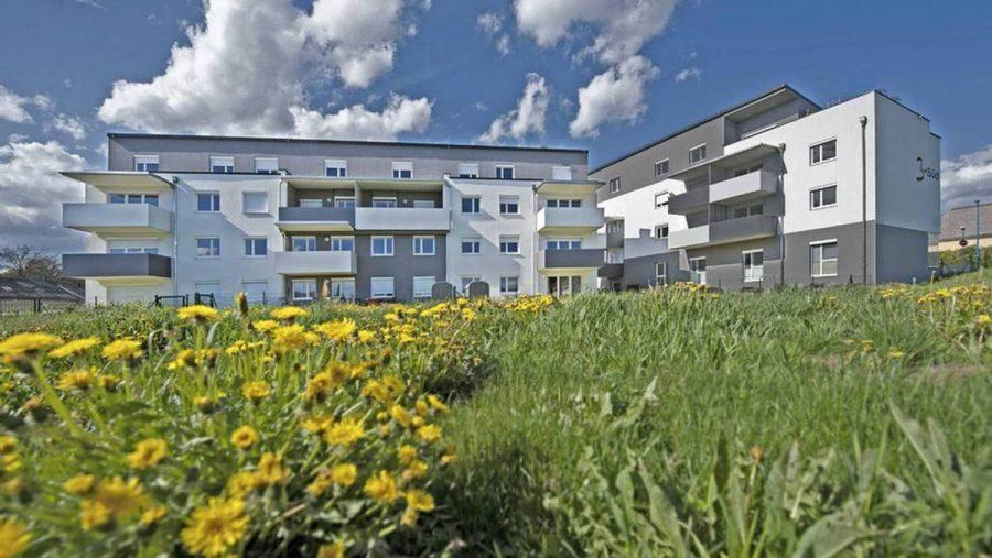 Immobilie von Wien-Süd in 7551 Stegersbach, Hauptstraße 28 #2