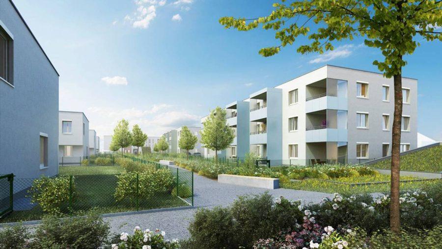 Immobilie von Wien-Süd in 4600 Wels, Hinterschweigerstraße 47 #0