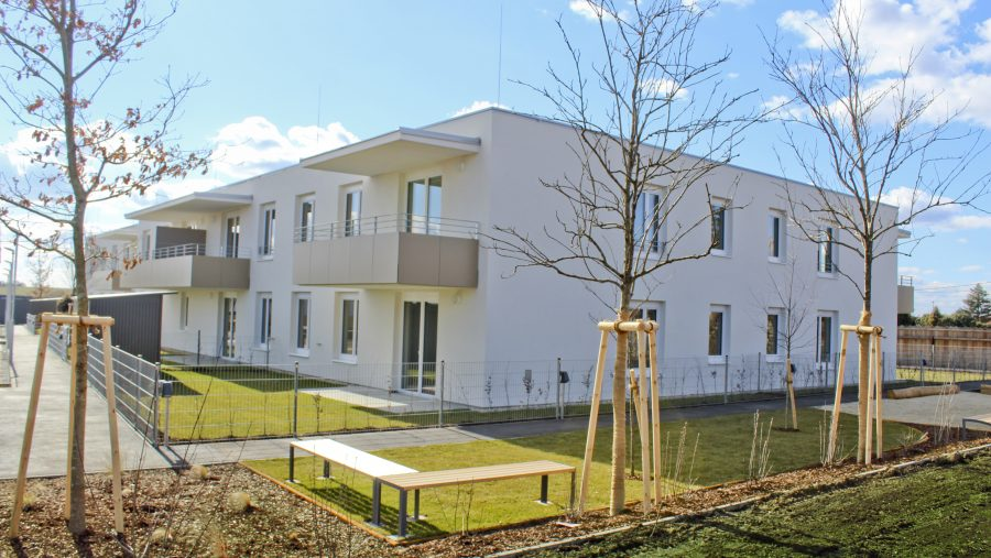 Immobilie von Wien-Süd in 2272 Ringelsdorf-Niederabsdorf, Siedlung Ost Nr. 479 #1